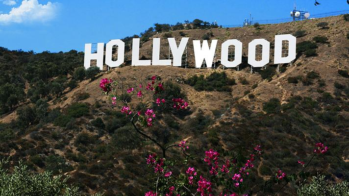 Image result for los angeles hollywood